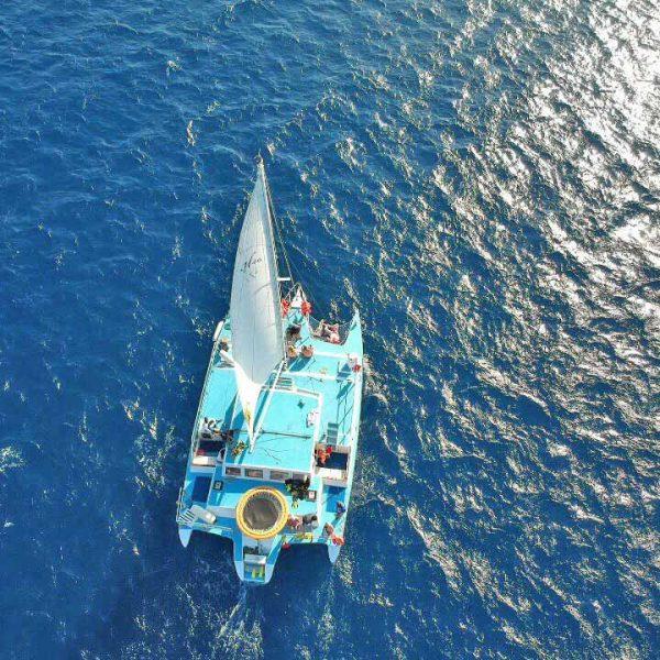 Sailing Freestyle