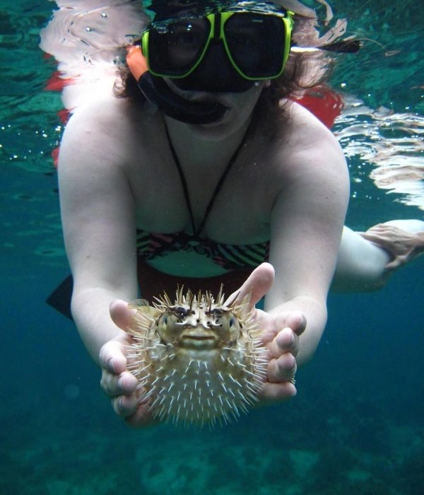 snorkelinglg